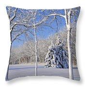 Trees In Snow  Wisconsin Throw Pillow by Anonymous