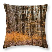 Trees In The Forest In March With Orange Leaves Throw Pillow