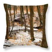 Trees In The Forest In Winter Brown And Orange Leaves Throw Pillow