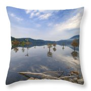 Trees In The Lake Throw Pillow