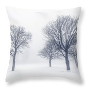 Trees In Winter Fog Throw Pillow