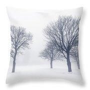 Trees In Winter Fog Throw Pillow by Elena Elisseeva