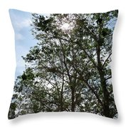 Trees At The Park Throw Pillow
