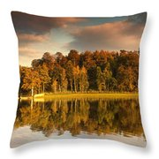 Trees Lining The Waters Edge Reflected Throw Pillow