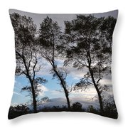 Trees Throw Pillow by Louise Heusinkveld