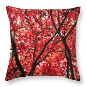 Trees Of Autumn Throw Pillow