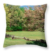 Trees On A Field, Davidson River Throw Pillow