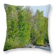 Trees On A Lakeshore Throw Pillow