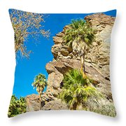 Trees On South Side Of Andreas Canyon In Indian Canyons-ca Throw Pillow
