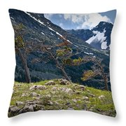 Trees On Top Of A Ridge At Glacier National Park Throw Pillow