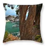 Trees Over Mcway Falls Throw Pillow
