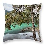 Trees Overhanging Cheakamus Lake Throw Pillow