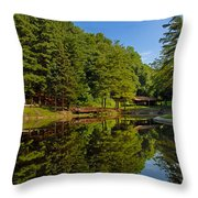 Trees Reflected On Mirrored Lake  Throw Pillow