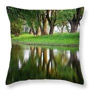 Trees Reflection On The Lake Throw Pillow