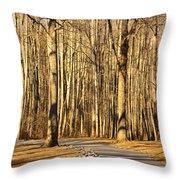 Trees Shadows Throw Pillow