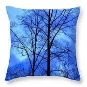 Trees So Tall In Winter Throw Pillow
