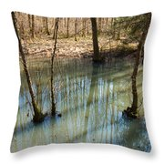 Trees Standing In The Water Throw Pillow