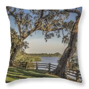 Trees With A View Throw Pillow