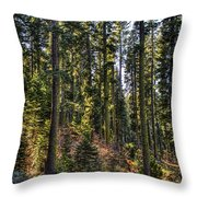 Trees With Moss In The Forest Throw Pillow