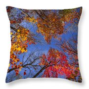 Treetops In Fall Forest Throw Pillow