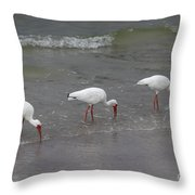 Tres Throw Pillow