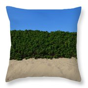Tri-color At The Beach Throw Pillow