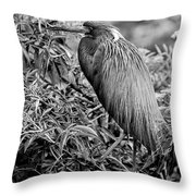 Tri-color - Bw Throw Pillow