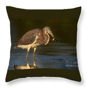 Tricolor Heron With Small Fish Throw Pillow