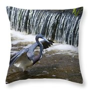 Tri-colored Heron No.2 Throw Pillow
