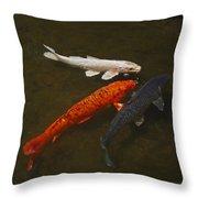 Tri-colored Koi Throw Pillow