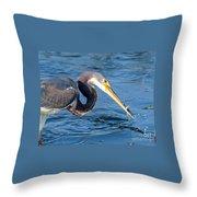 Tri Fish Splash Throw Pillow