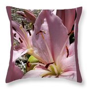 Tri Pink Lily Throw Pillow