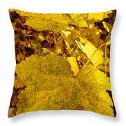 Tribute To Autumn Throw Pillow
