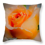Tricia's Rose 8.6.14  Throw Pillow