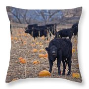 Trick Or Treat Cows Throw Pillow