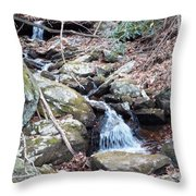Trickle Of Water Throw Pillow
