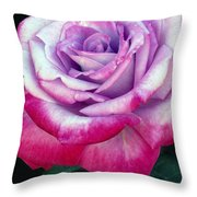 Tricolor Rose Throw Pillow