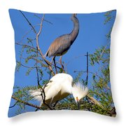 Tricolored Heron And Snowy Egret Throw Pillow