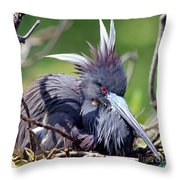 Tricolored Heron Female Incubating Eggs Throw Pillow