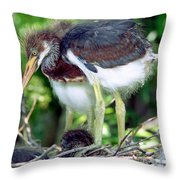 Tricolored Heron Nestlings Throw Pillow