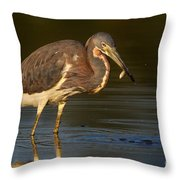 Tricolored Heron With Fish Throw Pillow