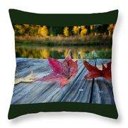 Tri Fall Throw Pillow