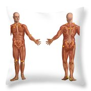 Trigger Points On The Human Body Throw Pillow
