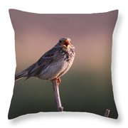 Triguero Corn Bunting  Throw Pillow