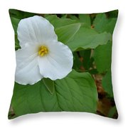 Trillium Near The River Throw Pillow