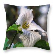 Trillium Purity Throw Pillow