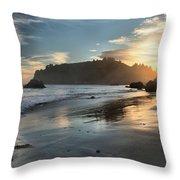 Trinidad Beach Reflections Throw Pillow