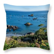Trinidad Harbor Throw Pillow