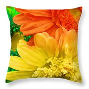 Trio Of Bright Colored Daisies Throw Pillow