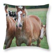 Trio Of Horses 2 Throw Pillow